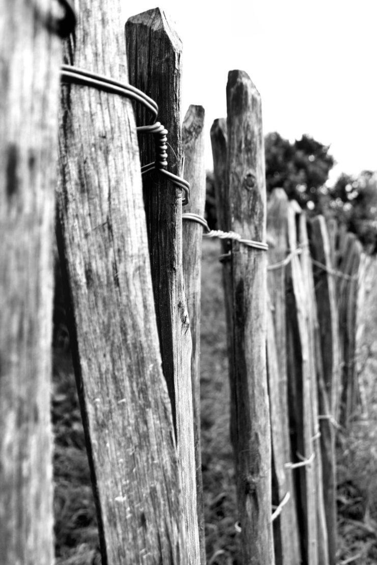 Ausflug zum Bauernhof der Domäne Dahlem by http://babyrockmyday.com/domaene-dahlem-2/