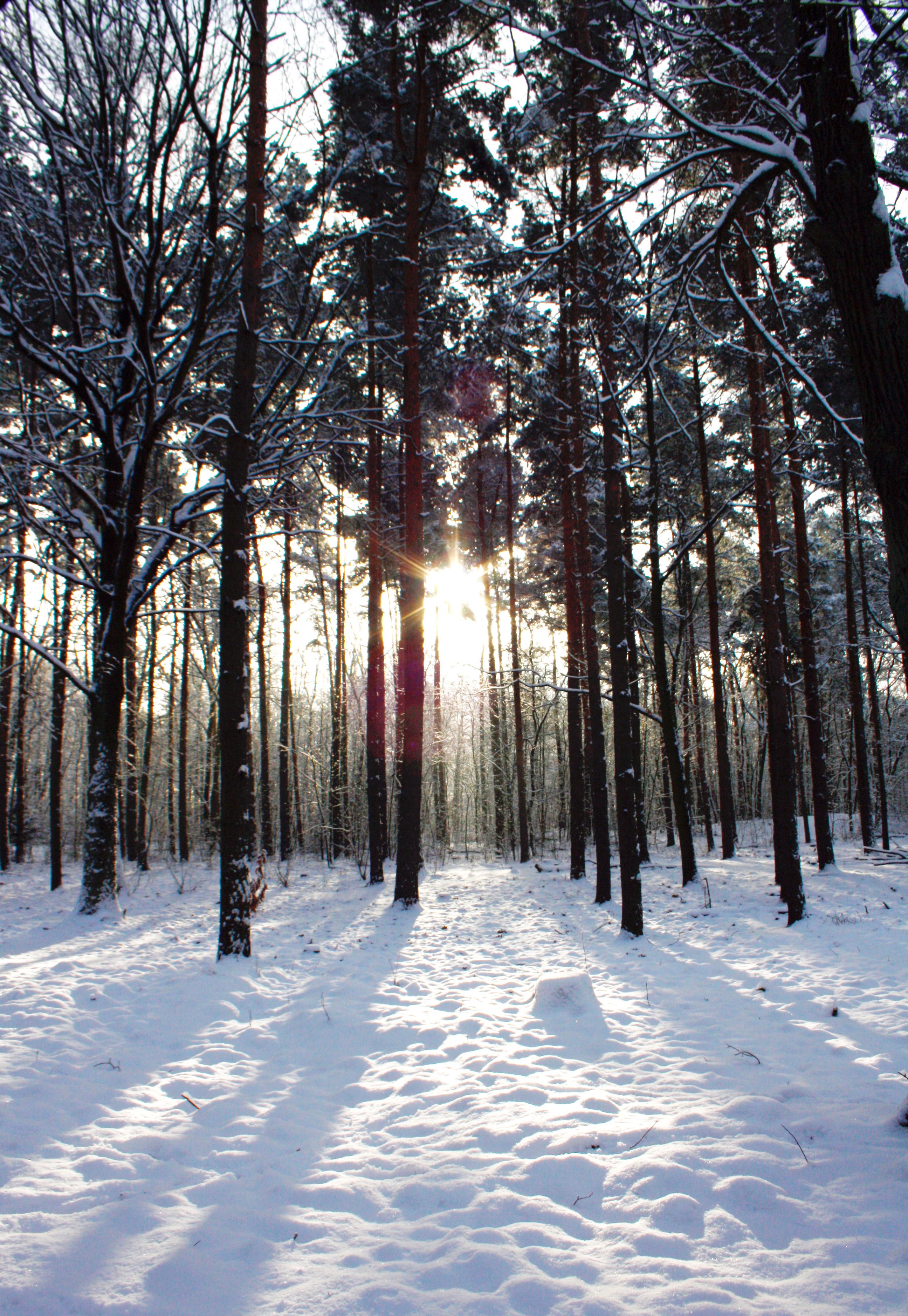 http://babyrockmyday.com/48-stunden-winter-berlin/