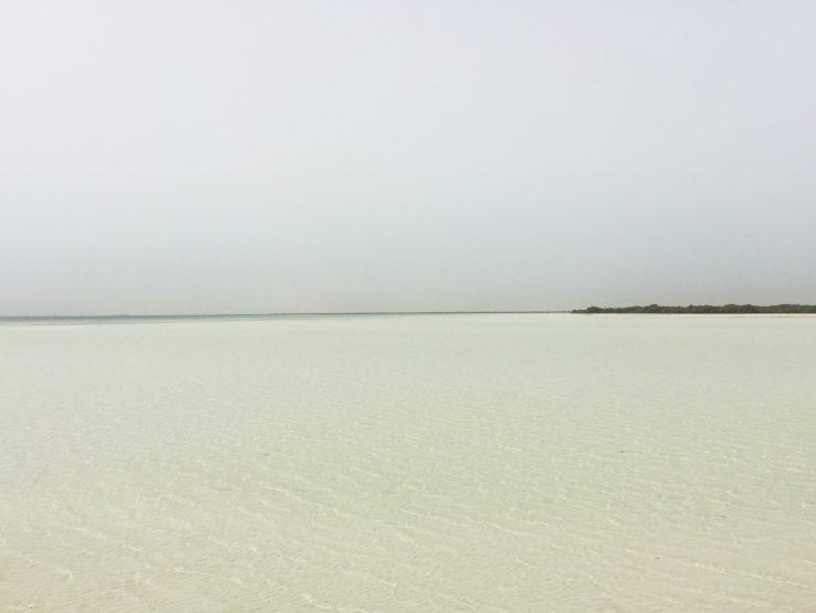 Kurztrip nach Abu Dhabi - was man sehen sollte: Sheikh Zayed Grand Mosque und Flamingos // Shorttrip to abu Dhabi by http://babyrockmyday.com/kurztrip-nach-abu-dhabi/